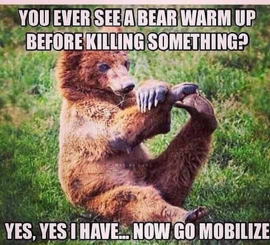 Supple Bear