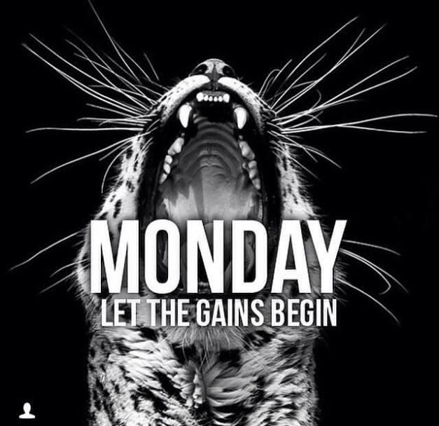 Monday Gainz